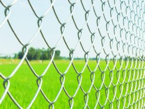 chain-wire-fencing-green